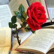 T'estimo Molt! Sant Jordi, the day of love in Catalunya